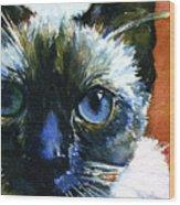 Cats Eyes 13 Wood Print