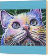 Cats Eyes 2 Wood Print