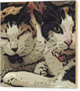 Cats In Bed Wood Print by KR Moehr