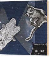 Cats In Space Wood Print