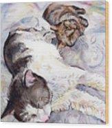 Cats In Watercolor Wood Print