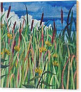 Cattails Wood Print by Helen Klebesadel