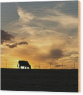 Cattle Sunset Silhouette Wood Print