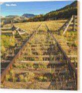 Cattle Track Guard Wood Print