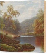 Cattle Watering Along The River Wharfe Wood Print