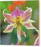 Caucaea Rhodosticta Orchid Wood Print