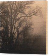 Caught Between Light And Dark Wood Print