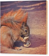 Caught Red Handed Wood Print