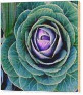 Cauliflower Abstract #6 Wood Print