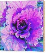 Cauliflower Abstract #8 Wood Print
