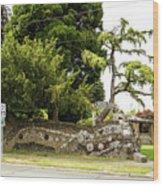 Causland Memorial Park In Anacortes Wood Print