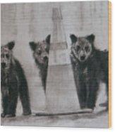 Caution Bears Wood Print