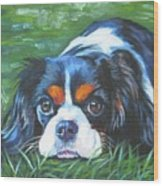 Cavalier King Charles Spaniel Tricolor Wood Print by Lee Ann Shepard