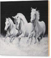 Cavalli Verticali Wood Print