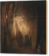 Cave 15 Wood Print