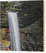 Cavern Cascade In Watkins Glen Wood Print