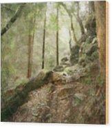 Cavern Walk ..... Wood Print