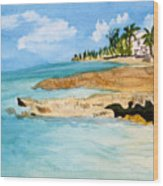 Cayman Shoreline Wood Print