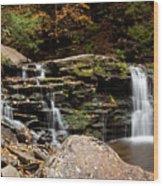 Cayuga Falls Wood Print