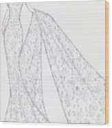 Cb39 Wood Print by Christine Corretti