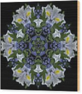 Ceanothus Iris Medley 2 Wood Print
