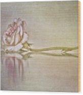 Cecile Brunner Wood Print