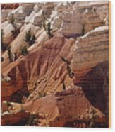 Cedar Breaks 5 Wood Print