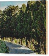 Cedar Curve Wood Print