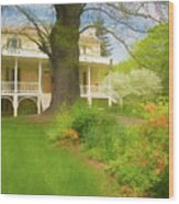 Cedar Grove In Spring Wood Print