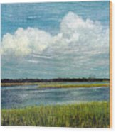 Cedar Key 1 Wood Print by Bob Senesac
