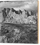 Cedar Pass Wood Print