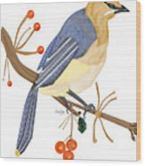 Cedar Waxwing In The Berries Wood Print