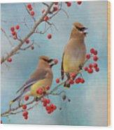 Cedar Waxwing Pair Wood Print