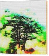 Cedars Of Lebanon  Wood Print