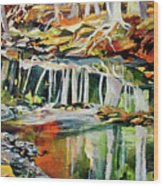 Ceeekbed, Fall Colors 4 Wood Print