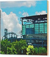 Cellular Field Wood Print