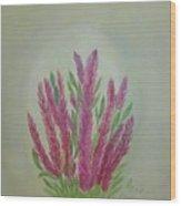 Celosia Dragon's Breath Acrylic Painting By Artist Rosie Foshee Wood Print