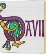 Decorative Celtic Name David Wood Print