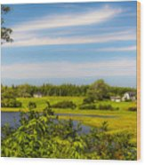 Celtic Shores Coastal Trail Wood Print