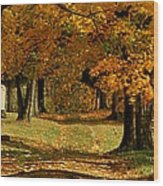 Cemetary Road In Autumn Wood Print
