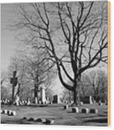 Cemetery 5 Wood Print