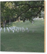 Cemetery At Shiloh National Military Park In Tennessee Wood Print