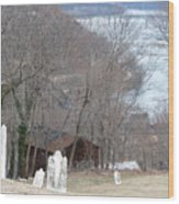Cemetery Color Wood Print