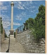 Cemetery Entrance And Lovejoy Monument  Wood Print