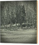 Cemetery In The Woods Wood Print
