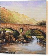 Cenarth Bridge And Falls Wood Print