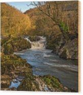 Cenarth Falls Wood Print