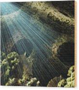 Cenote II Wood Print