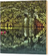 Cenote Wood Print