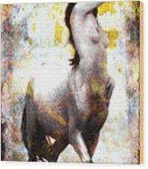 Centaur Wood Print
